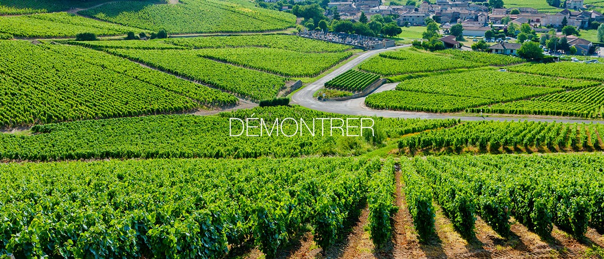 demontrer-1
